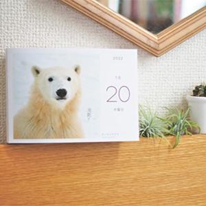 手元で見やすいハンディサイズの卓上カレンダーは横置きタイプ。飾り棚やデスクの上にぴったり。