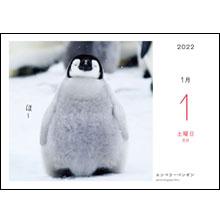 カレンダー内容01