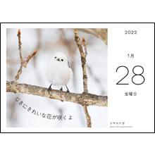カレンダー内容02