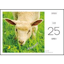 カレンダー内容03