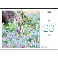 カレンダー内容04