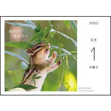 カレンダー内容07