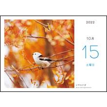 カレンダー内容09