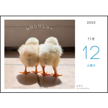 カレンダー内容11