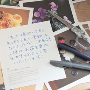 カレンダーの裏面には、その月の花と器の紹介コラムも。また、切ってフォトカードとしても使えます。